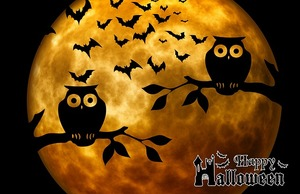 halloween-975519_640